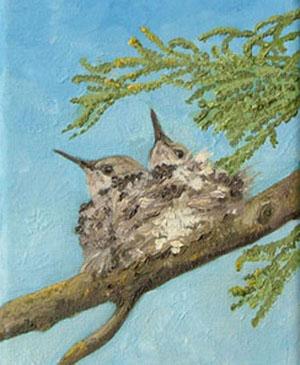 Rescue Humming Birds