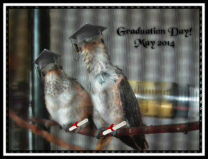 Graduation Picture Original