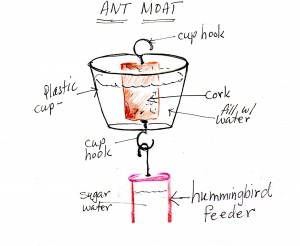 ANT MOAT for Hummingbird feeders